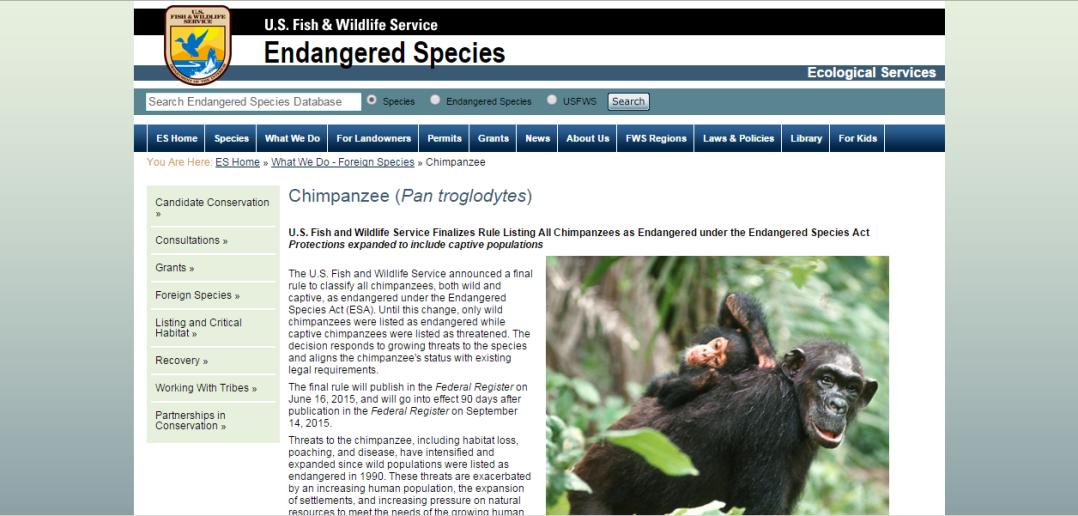 usfws_chimp