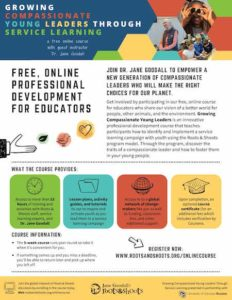 Download Course Flyer