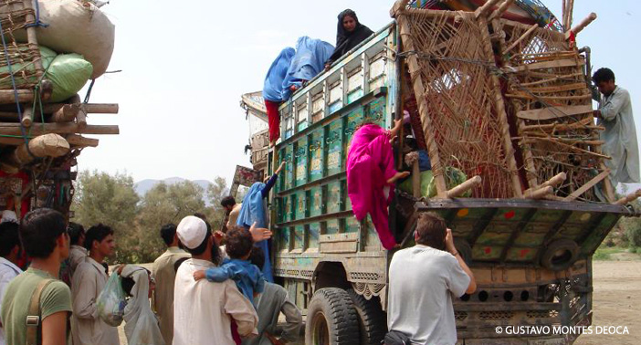 Refugees climb aboard a transport bus in Afghanistan.