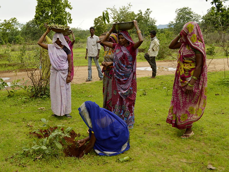 798px-Women_planting_trees,_Umaria_district,_MP,_India
