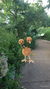 A wild Doduo appears in the gardens near Smithsonian's Natural History Museum.
