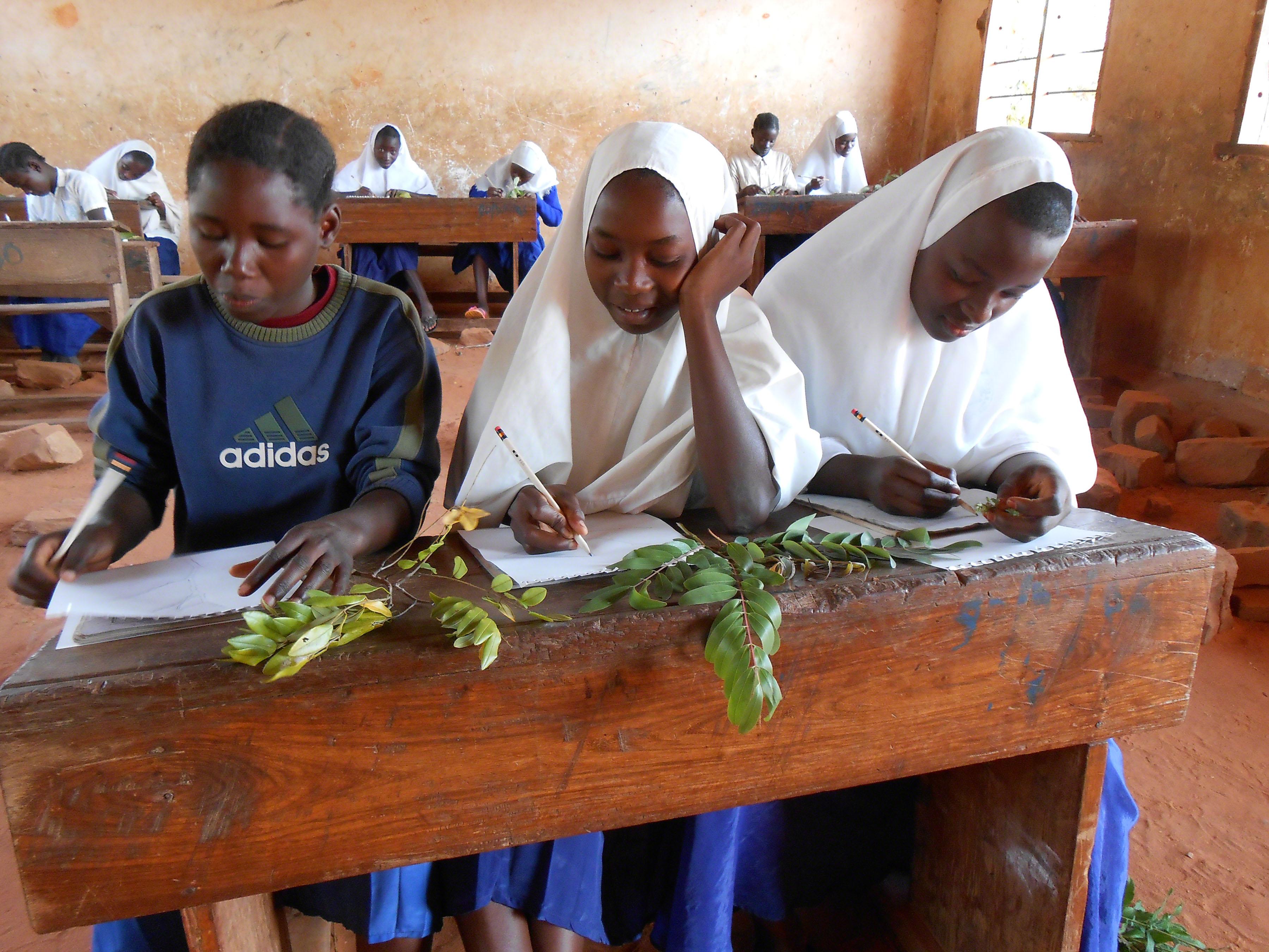 Girls at the Sokoine School near Kigoma, Tanzania
