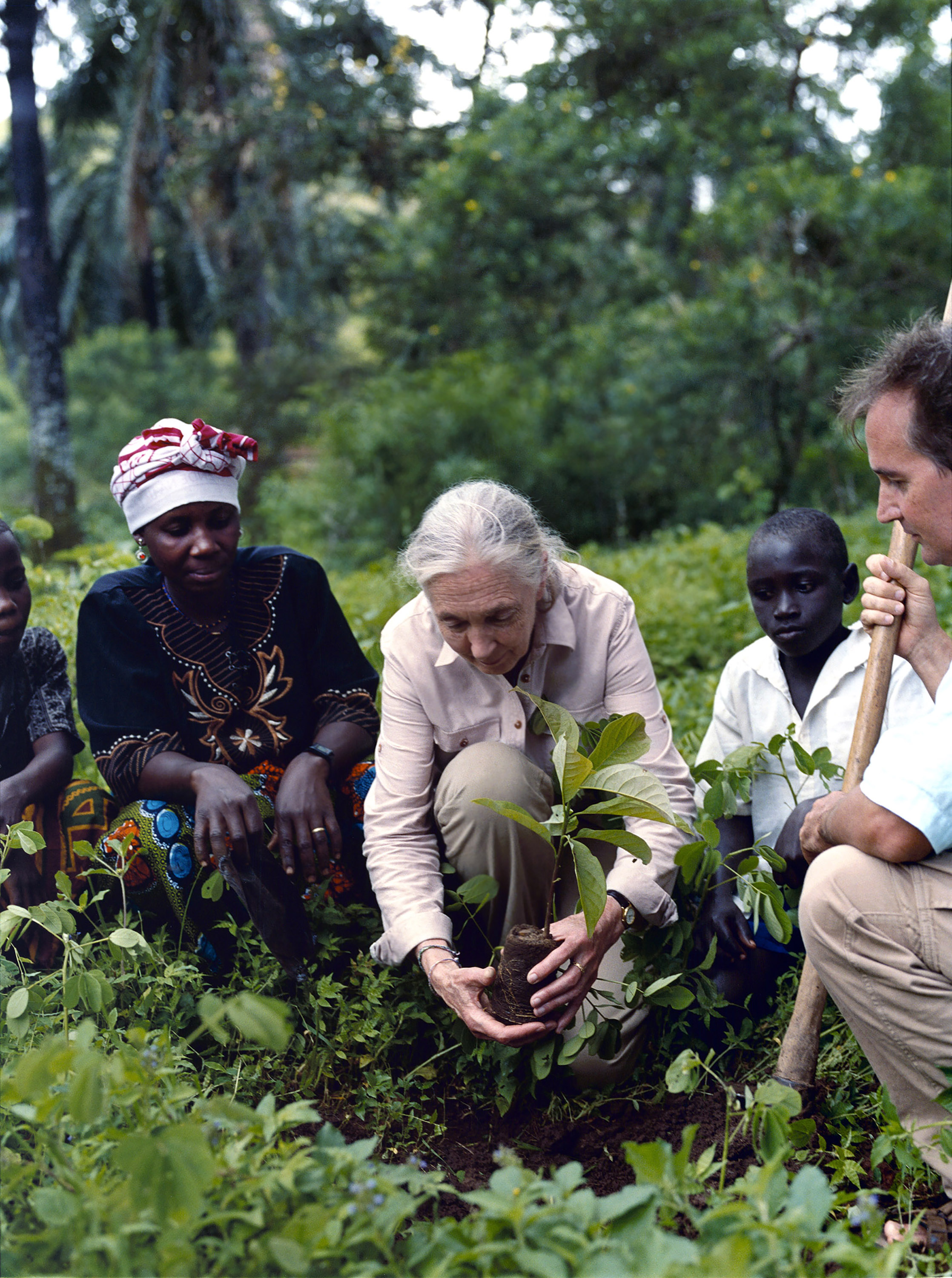 Jane Goodall plants a tree seedling in Gombe National Park. With her is son Grub. GANT photo shoot.