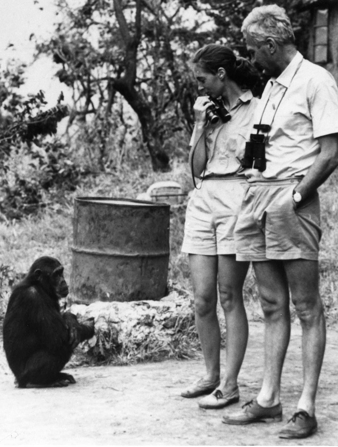 Melissa, Jane Goodall and Robert Hinde in Gombe Stream Wildlife Preserve