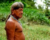 The Amazon You Have Not Seen is Disappearing: Yasuni Man
