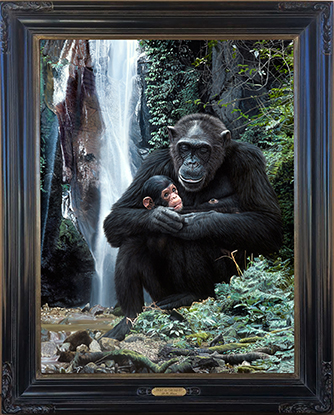 Bruce Lawes- Frame for Spirit of the Forest low res