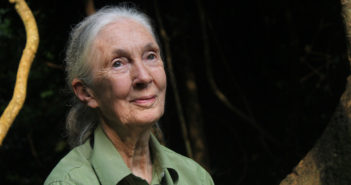 Dr. Jane Goodall On The ESA & the Need to Respect Nature