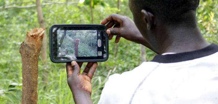 Villager uses a tablet to record forest health