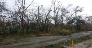 Aftermath of Hurricanes Maria and Irma in Puerto Rico provided by Claudia B.