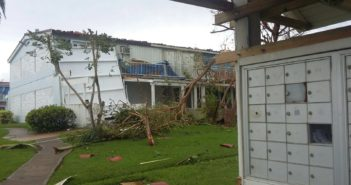 Aftermath of Hurricanes Maria & Irma in Puerto Rico. Photo provided by Claudia B. of the Roots & Shoots NYLC.