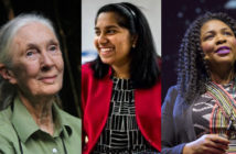 women in stem banner1