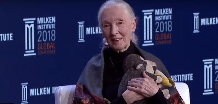 Jane Milken