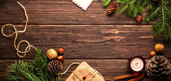 JGI's 2018 Holiday Good For All Gift Guide