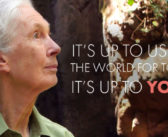 Jane's Turning 85: Will You Be a Part of Generation Jane?