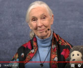Hope Online: Dr. Goodall's Skype in the Classroom Reaches 200k Students