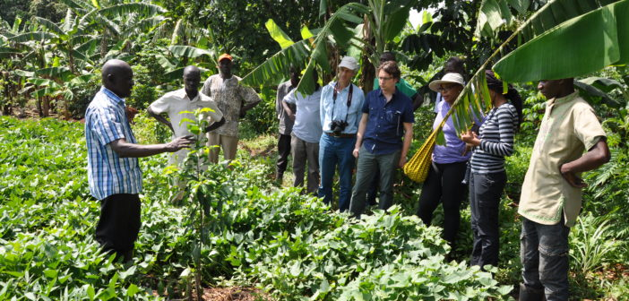 Humans & Wildlife Can Co-Exist In Uganda Through Holistic Solutions
