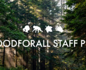 JGI STAFF INSPO: Making Social Distancing #GOODFORALL