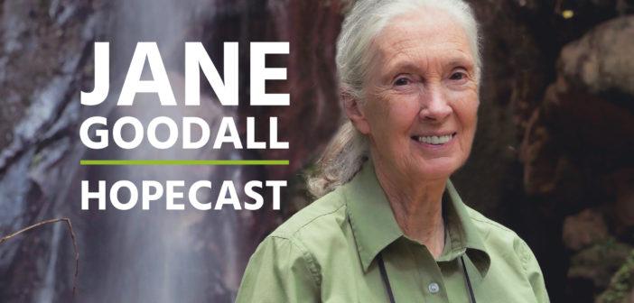 Coming Soon – Jane Goodall: Hopecast