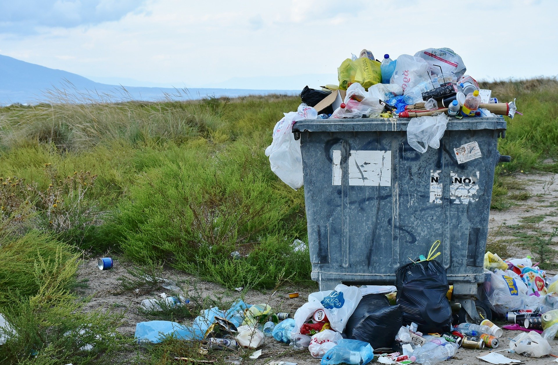 Use the Five R's to Do a Waste Audit
