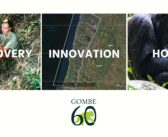 GOMBE 60: Honoring 60 Years of Discovery, Innovation, & Hope