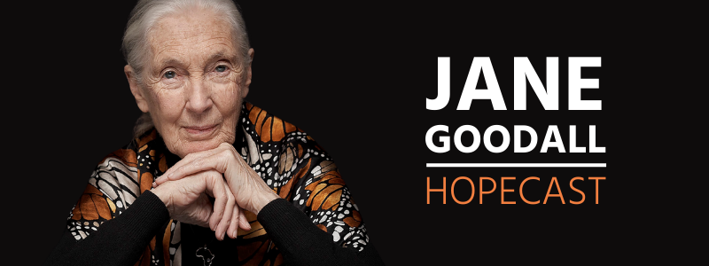 YOUR CHANCE to be Part of JANE GOODALL HOPECAST