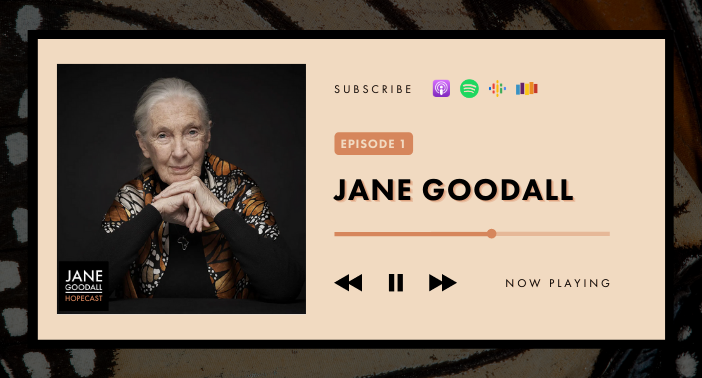 JANE GOODALL HOPECAST: PODCAST EP 1 – You Are Reason for Hope