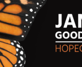 The Jane Goodall Hopecast: What You Need to End 2020 With Hope