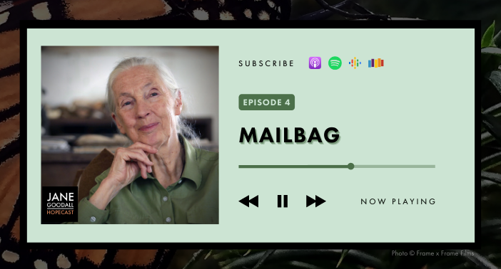 JANE GOODALL HOPECAST: PODCAST EP 4 – HOPECASTER MAILBAG
