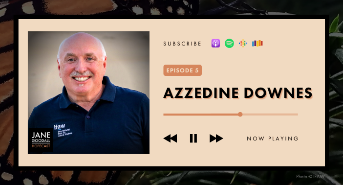 Jane Goodall Hopecast PODCAST EP 5 – AZZEDINE DOWNES