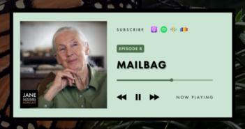 Jane Goodall Hopecast Podcast Ep 8 – Mailbag!