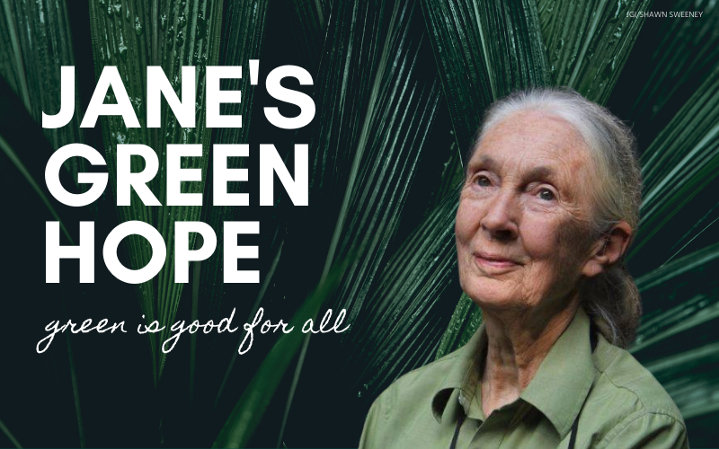 87 Years of Impact: Jane's Green Hope