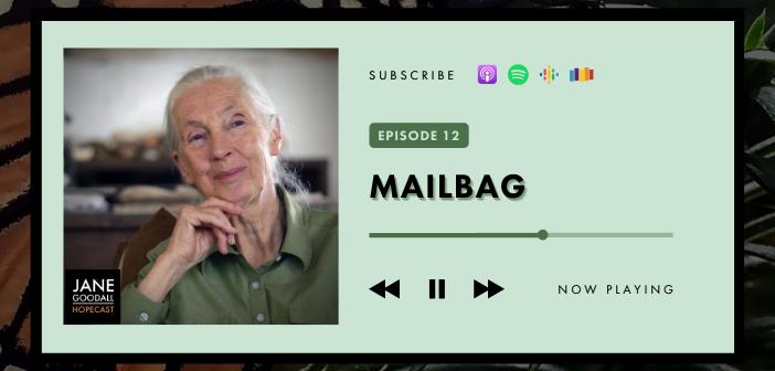 JANE GOODALL HOPECAST PODCAST EP 12 – MAILBAG!