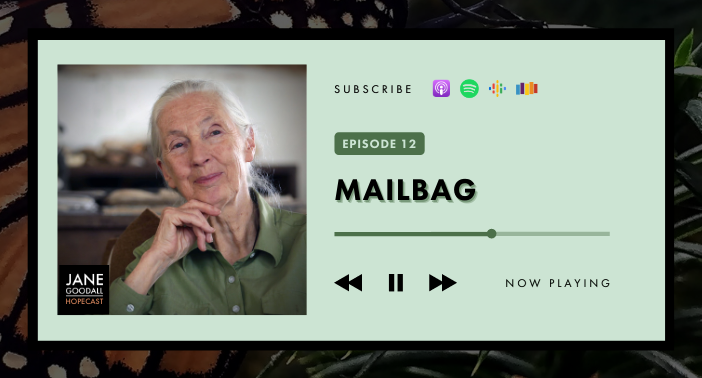JANE GOODALL HOPECAST PODCAST EP 12 – MAILBAG!